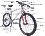 bicycledictionary1.jpg